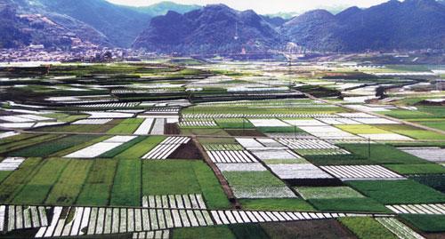 托福写作考试优秀范文:土地资源的使用问题