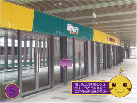 青岛新东方新都心校区盛大开业,iPad mini免费拿!